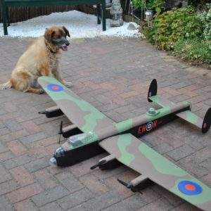Sadly Sammie has passed away but he never let a German near my Lancaster
